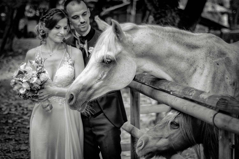 NicolaDaLio-Fotografo-Villa_Caprera-Treviso-130
