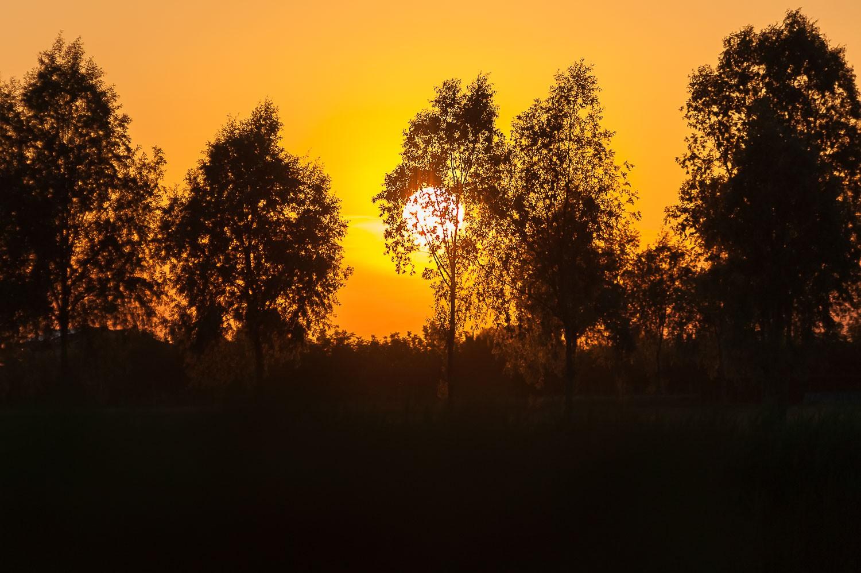 NicolaDaLio-Fotografo-Country-CAvalli-145