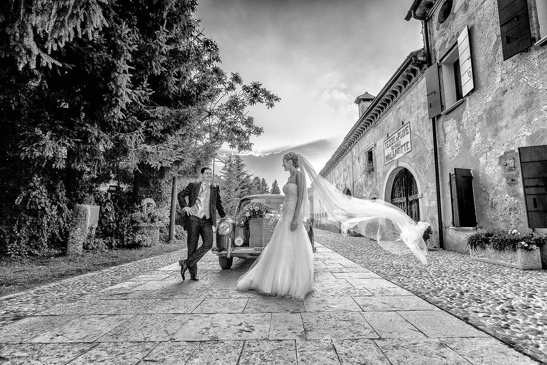 1_NicolaDaLio-Fotografo-Le_Calandrine-Treviso-132